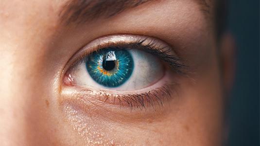 außergewöhnliche Farbpalette klassischer Chic großer Rabatt Kontaktlinsen reinigen leicht gemacht! | Lensbest